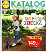 Lidl gazetka nr 22